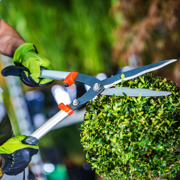 Lawncare Service Professionals Insurance